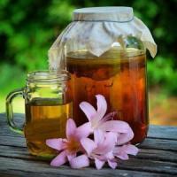 Срок хранения чайного гриба