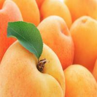 Срок хранения абрикосов