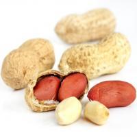 Срок хранения арахиса