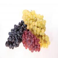 Срок годности винограда